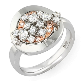 Splash of Diamonds - 14K Two-Tone Gold Ring